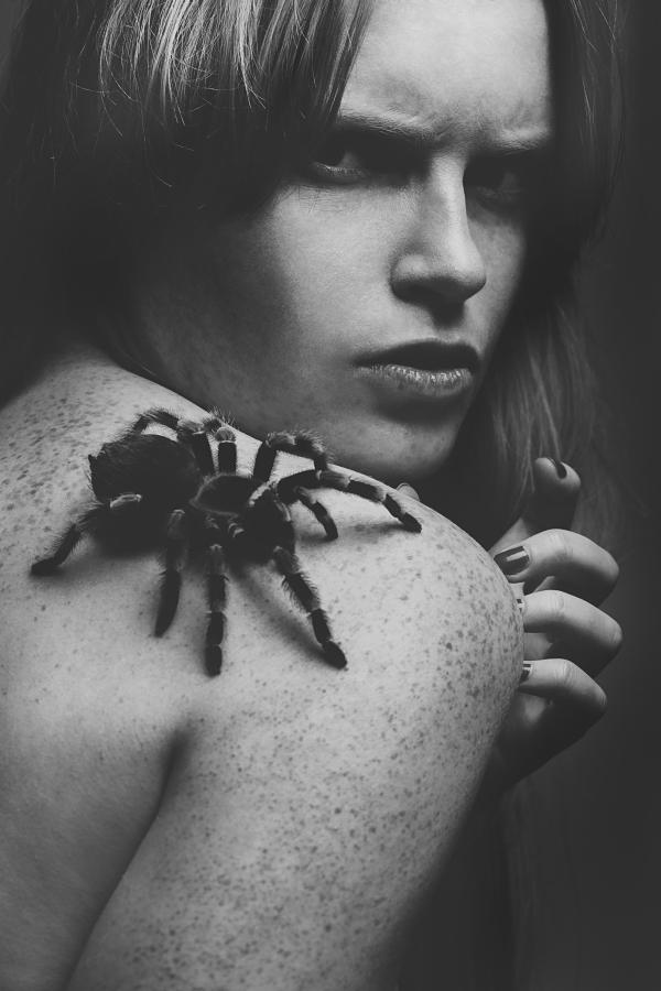 tarantula i dziewczyna